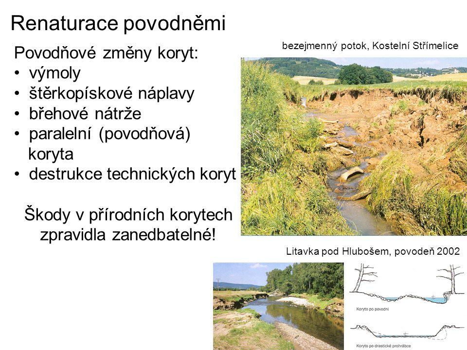 Renaturace povodněmi Povodňové změny koryt: výmoly štěrkopískové náplavy břehové nátrže paralelní (povodňová) koryta destrukce technických koryt Škody