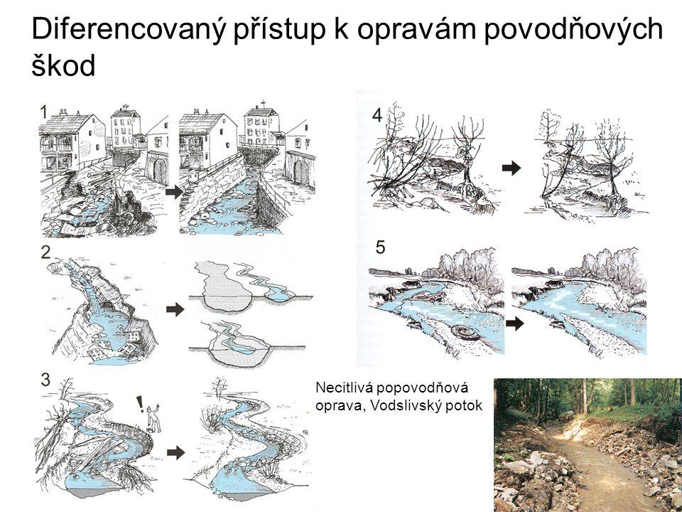 Diferencovaný přístup k opravám povodňových škod Necitlivá popovodňová oprava, Vodslivský potok