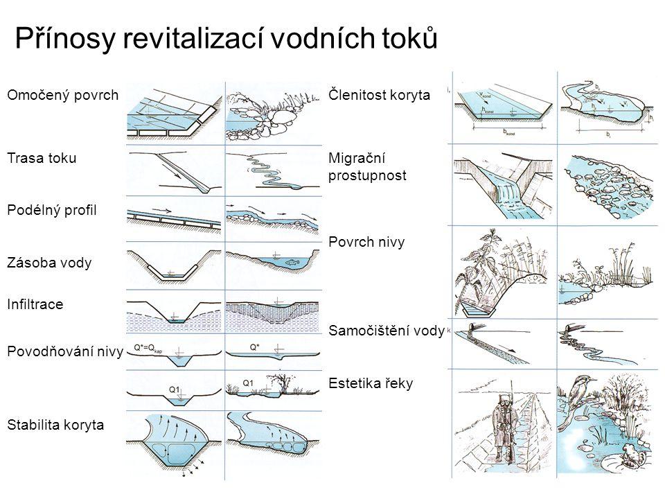 Přínosy revitalizací vodních toků Omočený povrch Trasa toku Podélný profil Zásoba vody Infiltrace Povodňování nivy Stabilita koryta Členitost koryta M