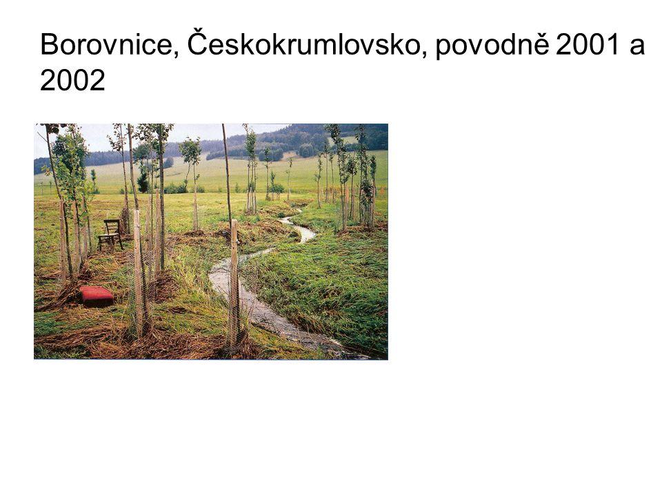 Borovnice, Českokrumlovsko, povodně 2001 a 2002