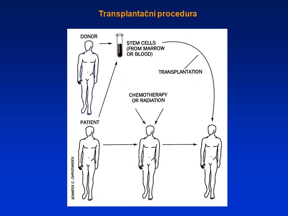 Transplantační procedura