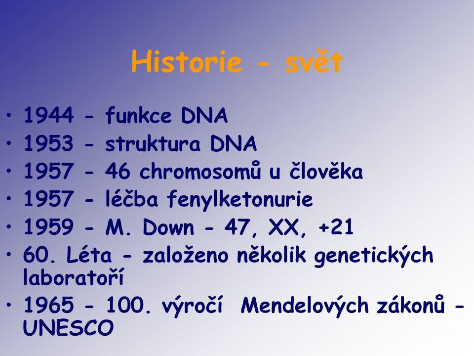 Historie - svět 1944 - funkce DNA 1953 - struktura DNA 1957 - 46 chromosomů u člověka 1957 - léčba fenylketonurie 1959 - M. Down - 47, XX, +21 60. Lét