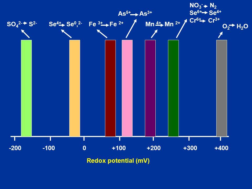 +400 O 2 H 2 O +300 +200+100 0-100-200 SO 4 2- S 2- Se 4+ Se 0, 2- Fe 3+ Fe 2+ Mn 4+ Mn 2+ NO 3 - N 2 Se 6+ Se 4+ Cr 6+ Cr 3+ Redox potential (mV) As 5+ As 3+