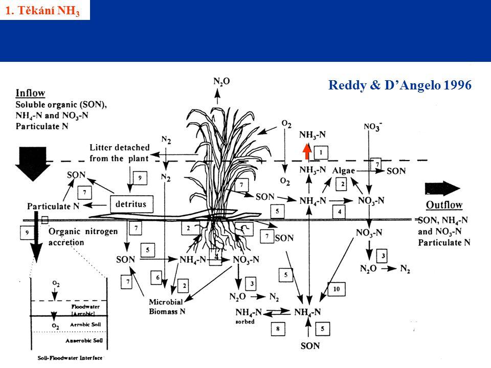 1. Těkání NH 3 Reddy & D'Angelo 1996