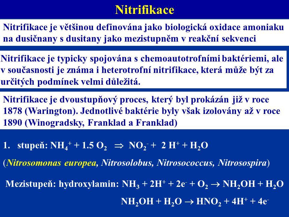 Nitrifikace je většinou definována jako biologická oxidace amoniaku na dusičnany s dusitany jako mezistupněm v reakční sekvenci Nitrifikace je typicky