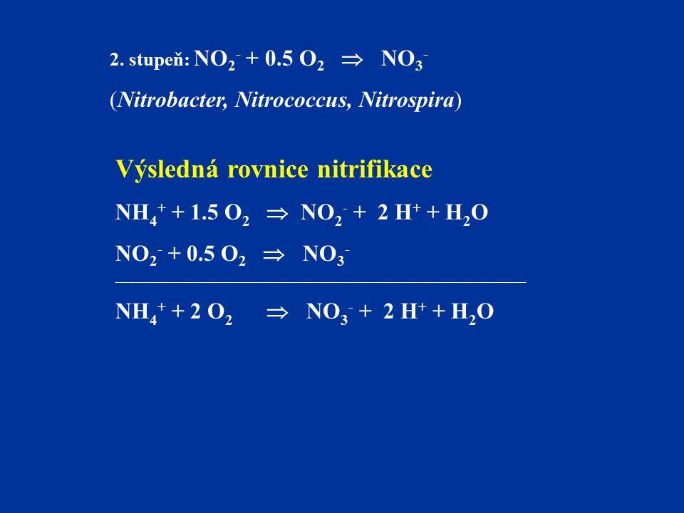 2. stupeň: NO 2 - + 0.5 O 2  NO 3 - (Nitrobacter, Nitrococcus, Nitrospira) Výsledná rovnice nitrifikace NH 4 + + 1.5 O 2  NO 2 - + 2 H + + H 2 O NO