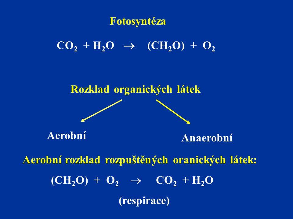 Aerobní rozklad rozpuštěných oranických látek: (CH 2 O) + O 2  CO 2 + H 2 O (respirace) Rozklad organických látek Aerobní Anaerobní Fotosyntéza CO 2