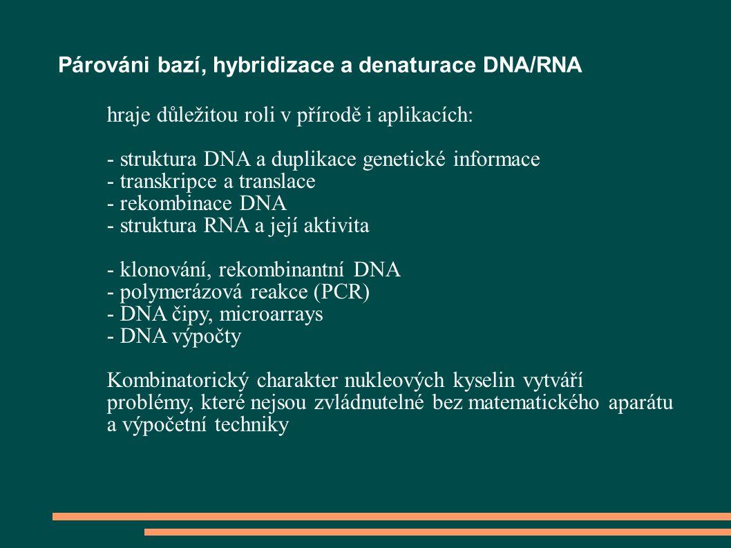 Párováni bazí, hybridizace a denaturace DNA/RNA hraje důležitou roli v přírodě i aplikacích: - struktura DNA a duplikace genetické informace - transkripce a translace - rekombinace DNA - struktura RNA a její aktivita - klonování, rekombinantní DNA - polymerázová reakce (PCR) - DNA čipy, microarrays - DNA výpočty Kombinatorický charakter nukleových kyselin vytváří problémy, které nejsou zvládnutelné bez matematického aparátu a výpočetní techniky