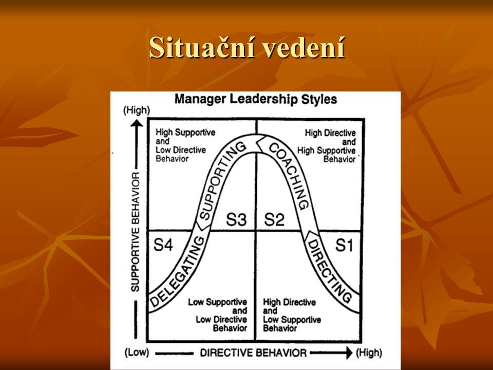 Situační vedení