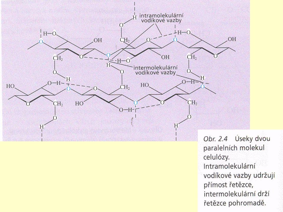 Složité cukry – kondenzace minimálně 2 a více molekul prostřednictvím reaktivního hydroxylu Složené cukry – s necukernou složkou Pohotovostní zdroj energie, málo stavební látky.
