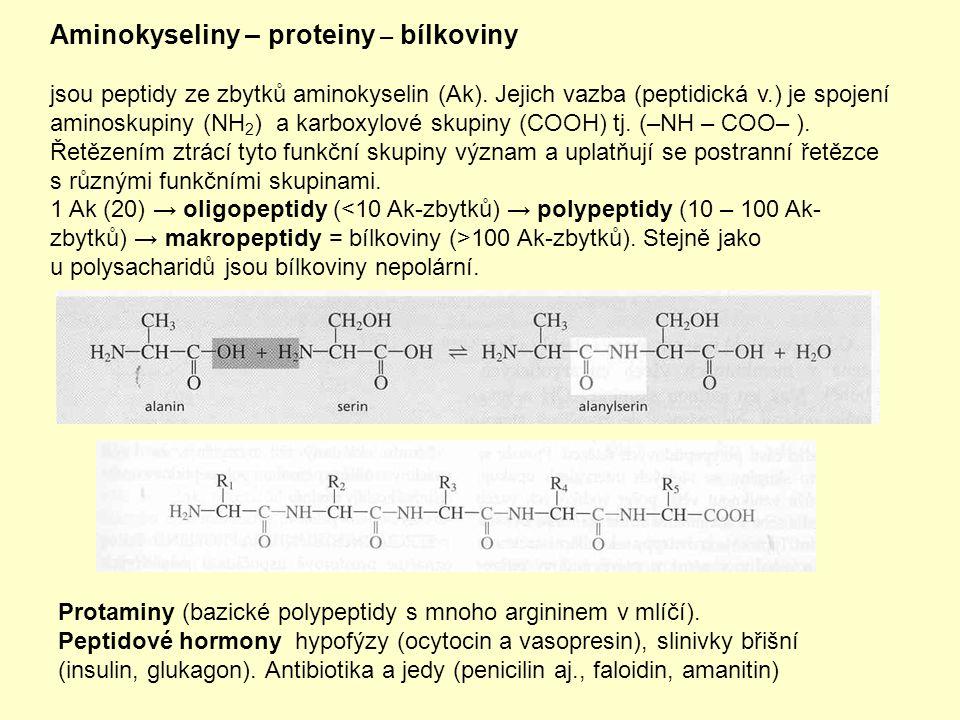 Aminokyseliny – proteiny – bílkoviny jsou peptidy ze zbytků aminokyselin (Ak). Jejich vazba (peptidická v.) je spojení aminoskupiny (NH 2 ) a karboxyl
