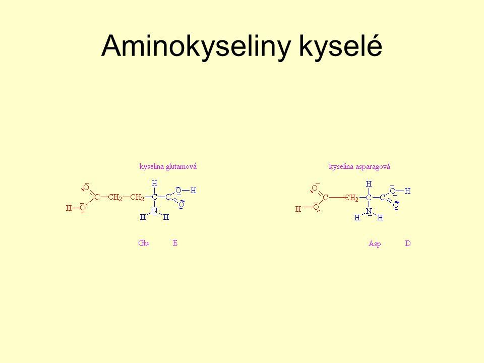 Aminokyseliny bazické