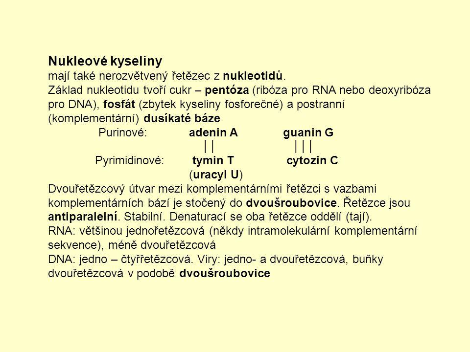 Makroergní nukleotidy (pro srovnání)