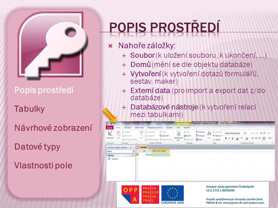 Kruczek, Aleš.Microsoft Access 2010 Podrobná uživatelská příručka.