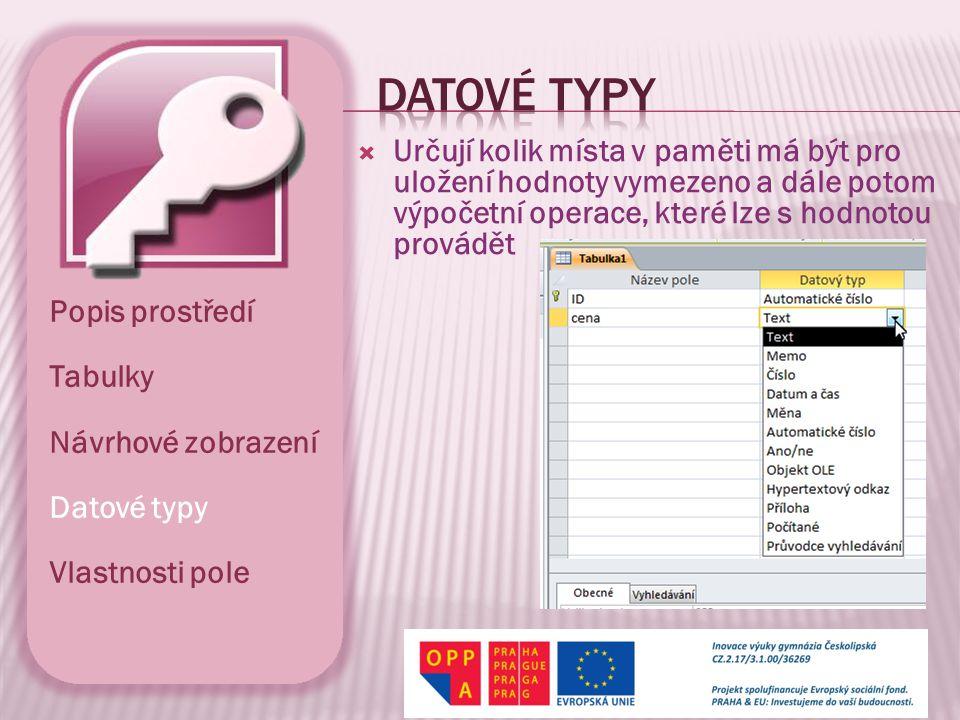  Přehled zástupných symbolů Popis prostředí Tabulky Návrhové zobrazení Datové typy Vlastnosti pole
