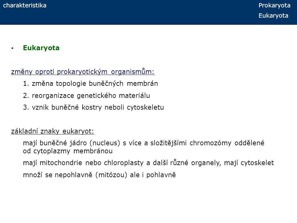 charakteristika Prokaryota Eukaryota  Eukaryota změny oproti prokaryotickým organismům: 1. změna topologie buněčných membrán 2. reorganizace genetick