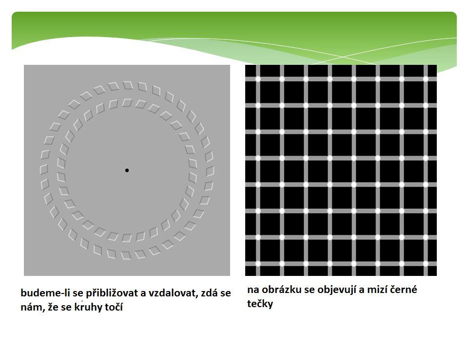 Otázky a úkoly: 1.Jakou se nazývá oční vada, kdo člověk vidí dobře blízké předměty a špatně ty vzdálené.
