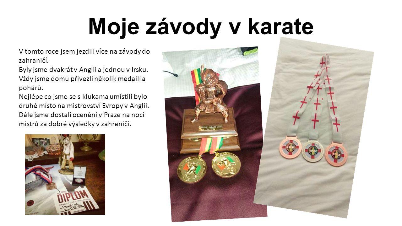 Moje závody v karate V tomto roce jsem jezdili více na závody do zahraničí. Byly jsme dvakrát v Anglii a jednou v Irsku. Vždy jsme domu přivezli někol
