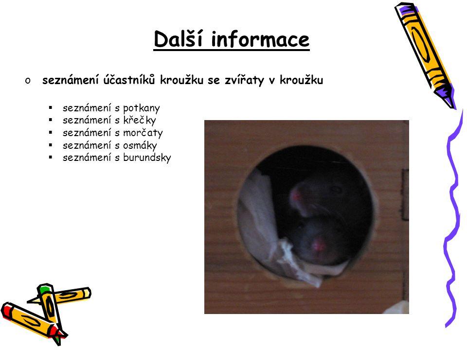 Další informace oseznámení účastníků kroužku se zvířaty v kroužku  seznámení s potkany  seznámení s křečky  seznámení s morčaty  seznámení s osmák