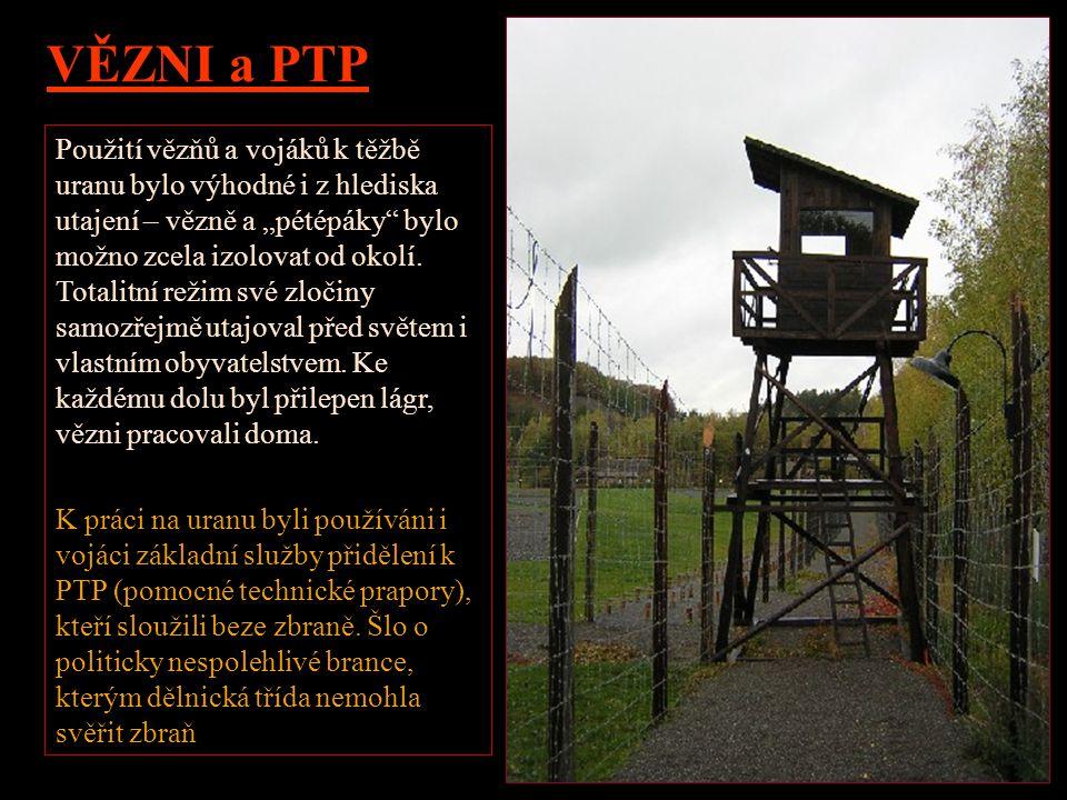 TNP - Tábory nucených prací Podle Zákona 247 z roku 1948 o táborech nucené práce bylo možno se do TNP dostat i za přestupek, a to na dobu 3 měsíců až