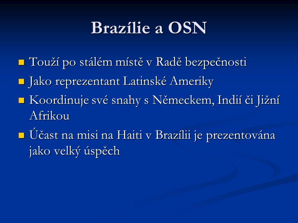 Brazílie a OSN Touží po stálém místě v Radě bezpečnosti Touží po stálém místě v Radě bezpečnosti Jako reprezentant Latinské Ameriky Jako reprezentant Latinské Ameriky Koordinuje své snahy s Německem, Indií či Jižní Afrikou Koordinuje své snahy s Německem, Indií či Jižní Afrikou Účast na misi na Haiti v Brazílii je prezentována jako velký úspěch Účast na misi na Haiti v Brazílii je prezentována jako velký úspěch