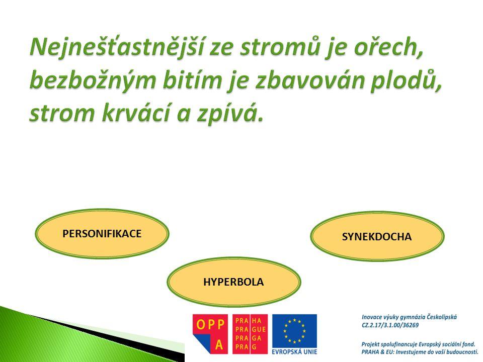 PERSONIFIKACE HYPERBOLA SYNEKDOCHA