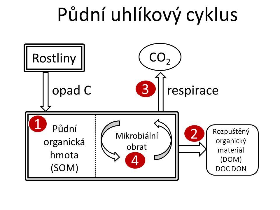 Půdní uhlíkový cyklus Rostliny Půdní organická hmota (SOM) Mikrobiální obrat CO 2 opad Crespirace Rozpuštěný organický materiál (DOM) DOC DON 1 2 3 4