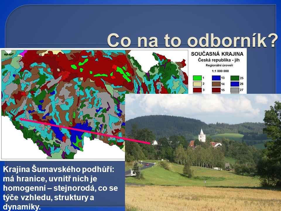 Krajina Šumavského podhůří: má hranice, uvnitř nich je homogenní – stejnorodá, co se týče vzhledu, struktury a dynamiky.