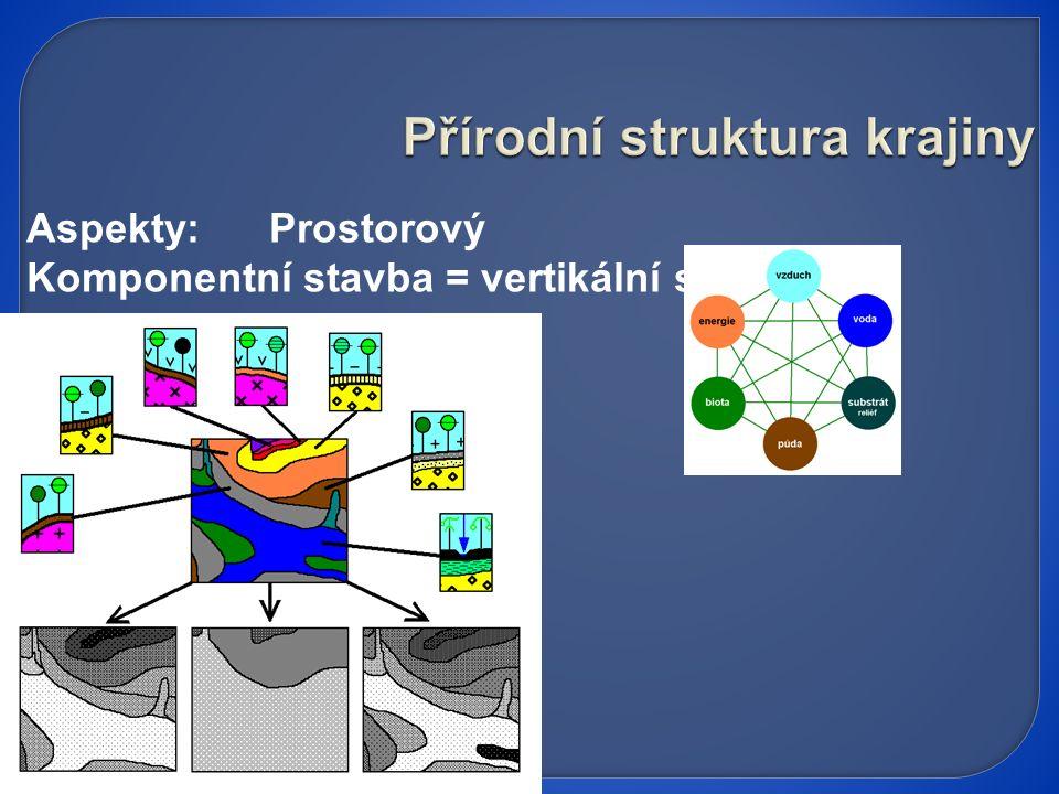 Aspekty: Prostorový Komponentní stavba = vertikální struktura
