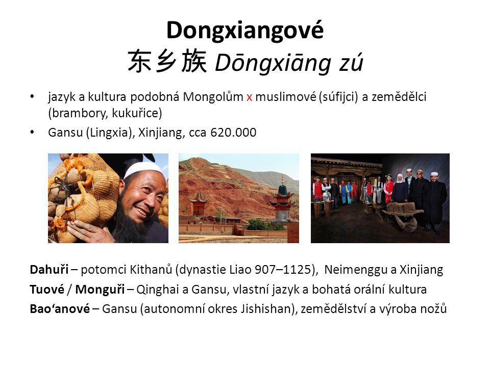 Dongxiangové 东乡族 Dōngxiāng zú jazyk a kultura podobná Mongolům x muslimové (súfijci) a zemědělci (brambory, kukuřice) Gansu (Lingxia), Xinjiang, cca 620.000 Dahuři – potomci Kithanů (dynastie Liao 907–1125), Neimenggu a Xinjiang Tuové / Monguři – Qinghai a Gansu, vlastní jazyk a bohatá orální kultura Bao'anové – Gansu (autonomní okres Jishishan), zemědělství a výroba nožů