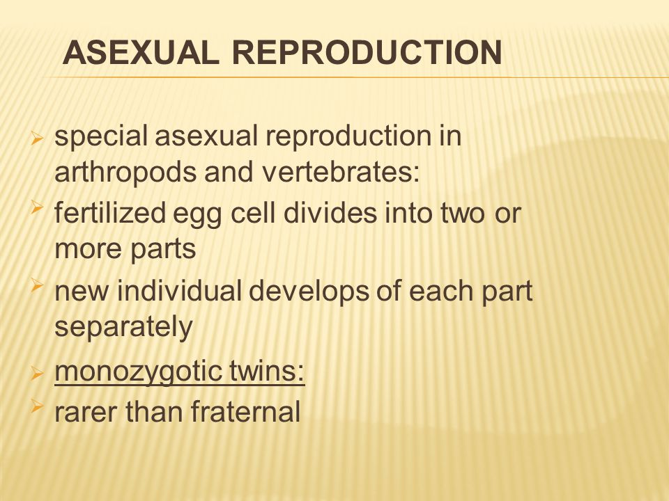  fraternal twins:  they are formed by the fertilization of two eggs  each by a different sperm  they might not be of the same sex  two siblings of the same age  different in many features TWINS