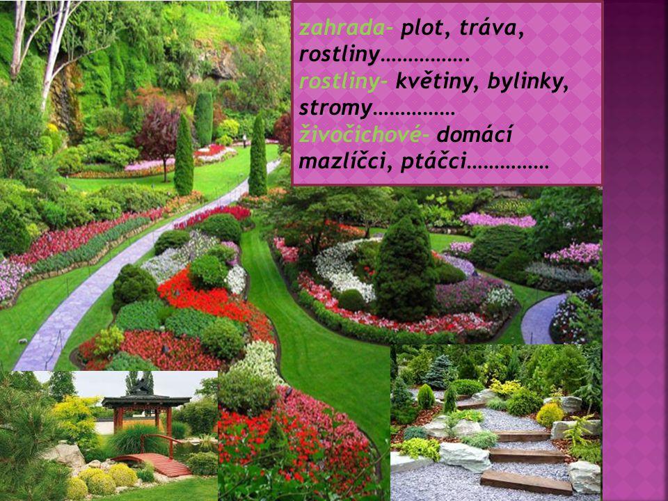 zahrada- plot, tráva, rostliny……………. rostliny- květiny, bylinky, stromy…………… živočichové- domácí mazlíčci, ptáčci……………