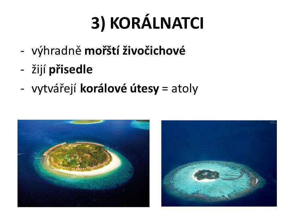 3) KORÁLNATCI -výhradně mořští živočichové -žijí přisedle -vytvářejí korálové útesy = atoly
