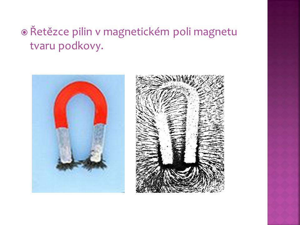  Řetězce pilin v magnetickém poli magnetu tvaru podkovy.