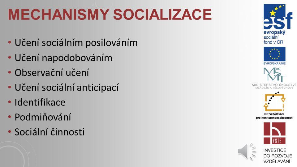 ČINITELÉ SOCIALIZACE Socializace je zajišťovaná tzv.
