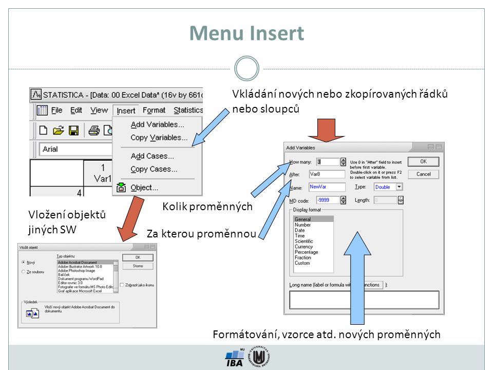 Menu Insert Vkládání nových nebo zkopírovaných řádků nebo sloupců Kolik proměnných Za kterou proměnnou Formátování, vzorce atd.