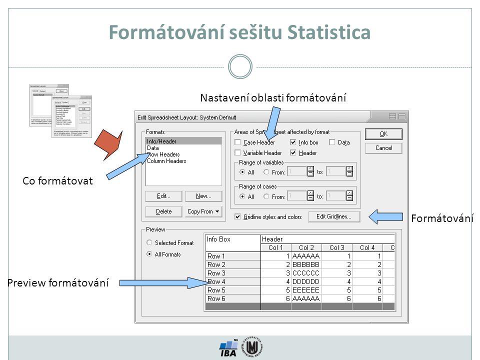 Formátování sešitu Statistica Co formátovat Preview formátování Nastavení oblasti formátování Formátování