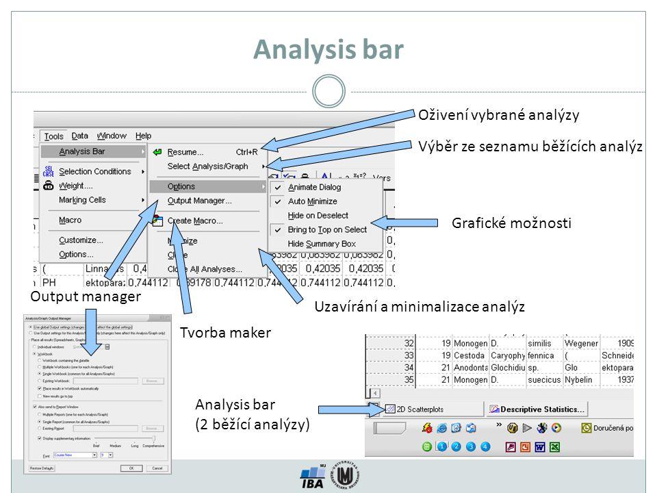 Analysis bar Oživení vybrané analýzy Výběr ze seznamu běžících analýz Grafické možnosti Output manager Tvorba maker Uzavírání a minimalizace analýz An