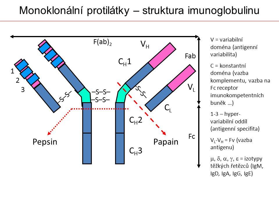 Monoklonální protilátky – struktura imunoglobulinu Fab Fc F(ab) 2 VHVH VLVL CLCL CH1CH1 –S–S– CH2CH2 CH3CH3 PapainPepsin V = variabilní doména (antige