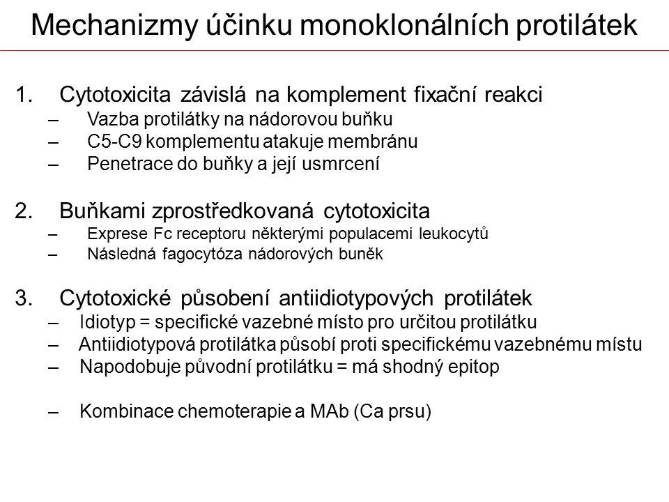 1.Cytotoxicita závislá na komplement fixační reakci –Vazba protilátky na nádorovou buňku –C5-C9 komplementu atakuje membránu –Penetrace do buňky a jej