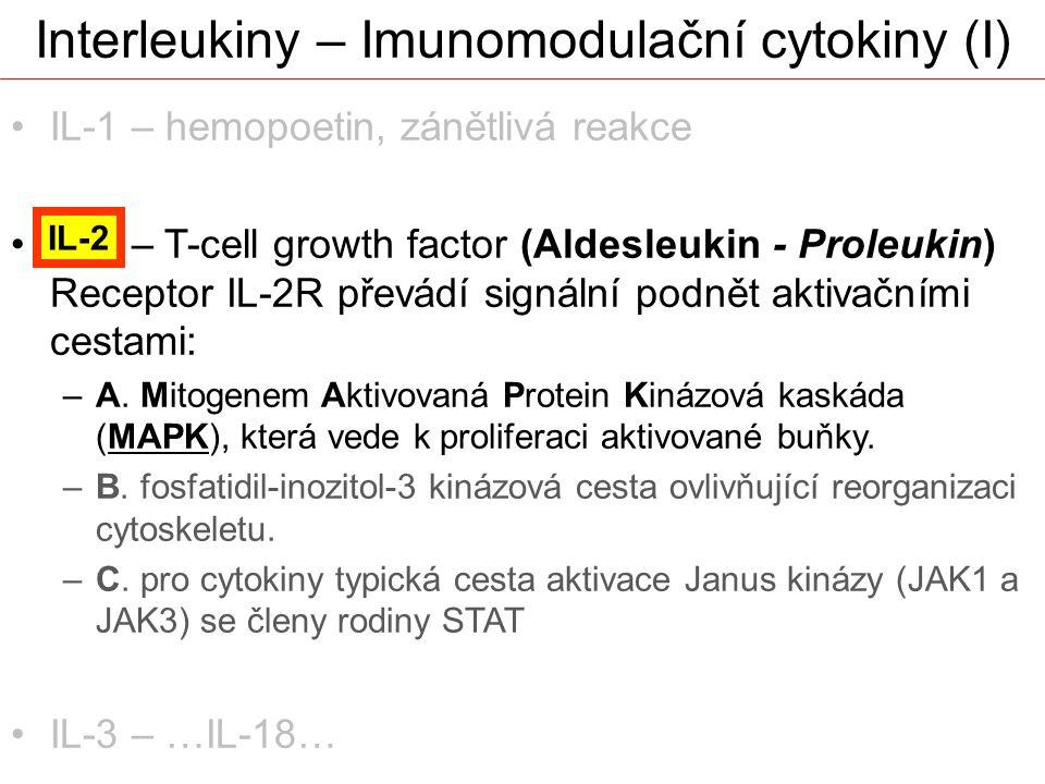 Interleukiny – Imunomodulační cytokiny (I) IL-1 – hemopoetin, zánětlivá reakce IL-2 – T-cell growth factor (Aldesleukin - Proleukin) Receptor IL-2R př