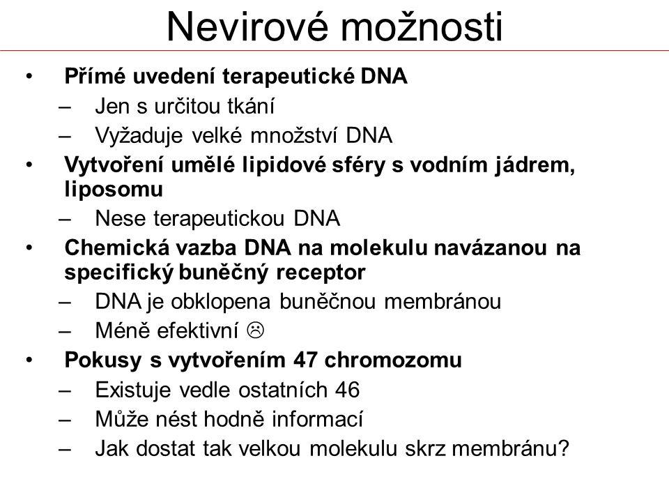 Nevirové možnosti Přímé uvedení terapeutické DNA –Jen s určitou tkání –Vyžaduje velké množství DNA Vytvoření umělé lipidové sféry s vodním jádrem, lip