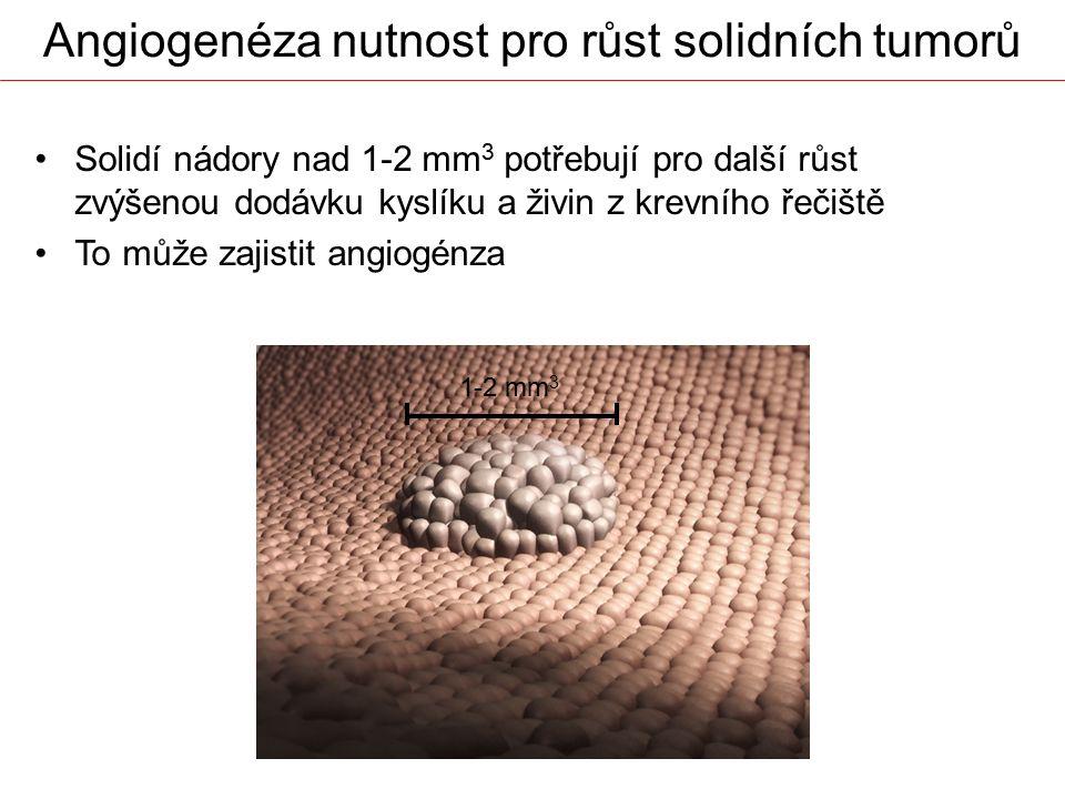 Angiogenéza nutnost pro růst solidních tumorů Solidí nádory nad 1-2 mm 3 potřebují pro další růst zvýšenou dodávku kyslíku a živin z krevního řečiště