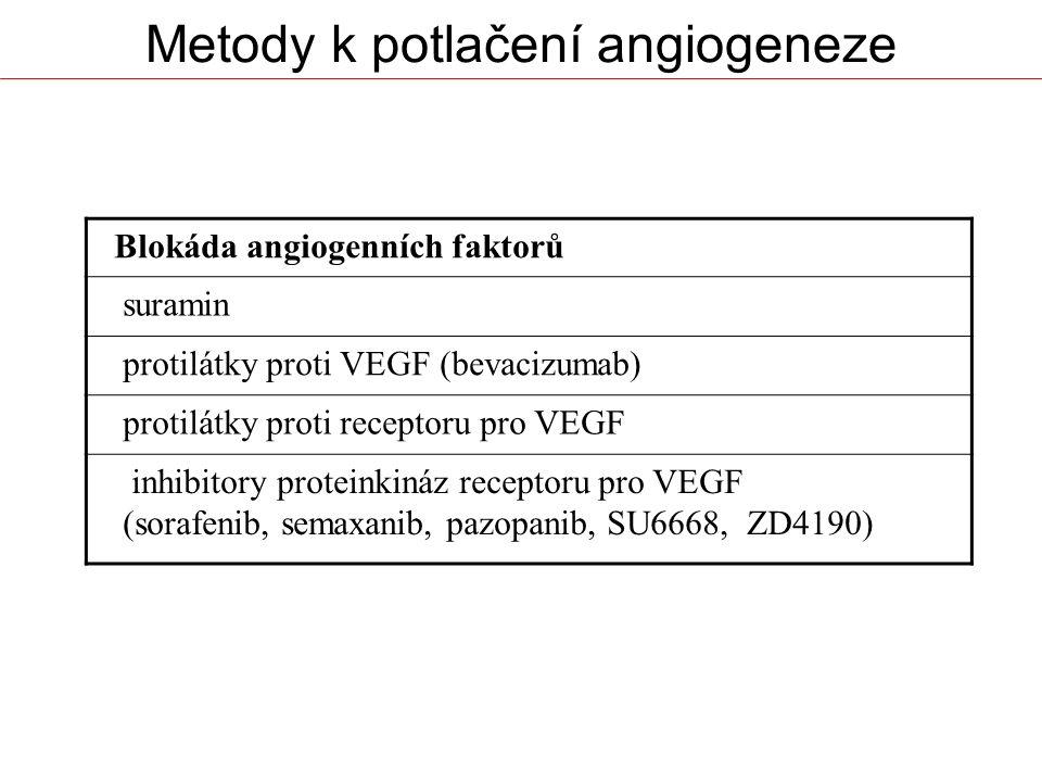 Metody k potlačení angiogeneze Blokáda angiogenních faktorů suramin protilátky proti VEGF (bevacizumab) protilátky proti receptoru pro VEGF inhibitory