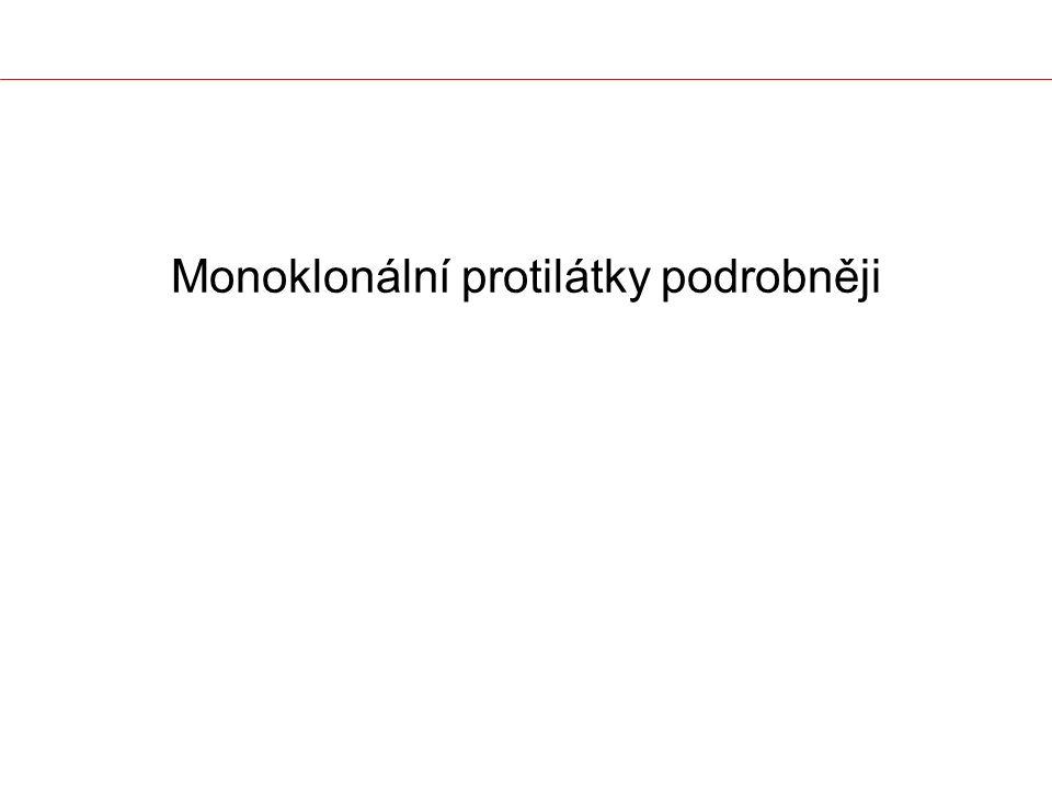 Monoklonální protilátky podrobněji