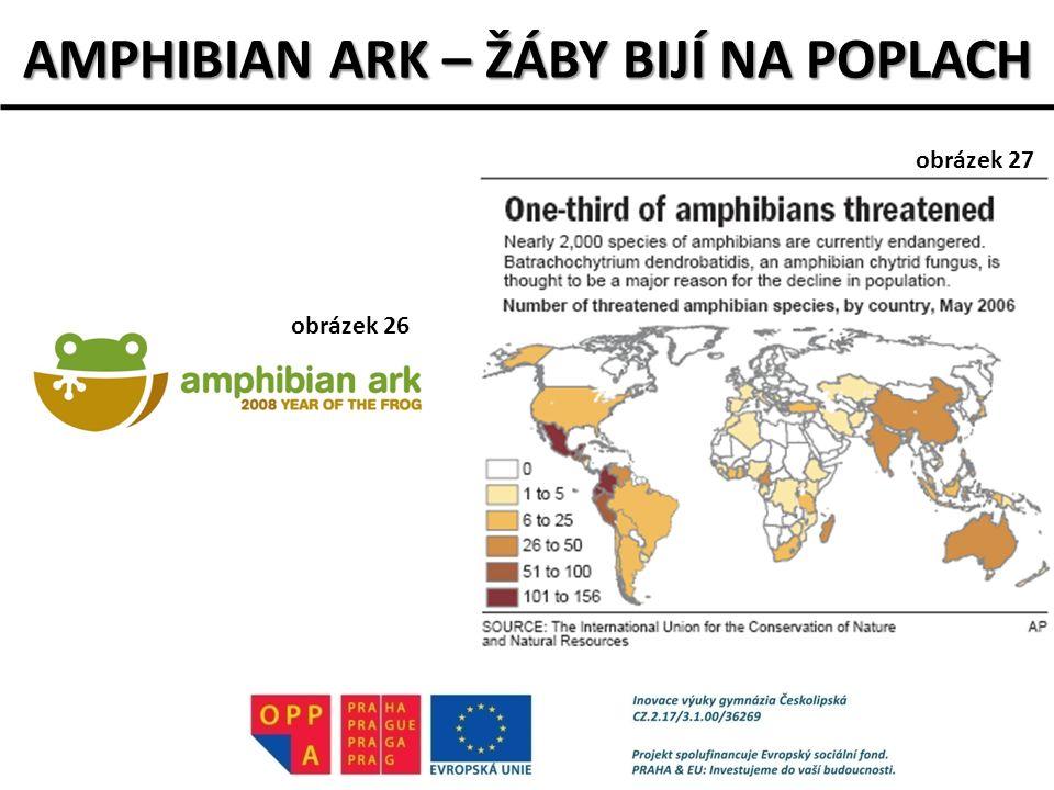 AMPHIBIAN ARK – ŽÁBY BIJÍ NA POPLACH obrázek 26 obrázek 27