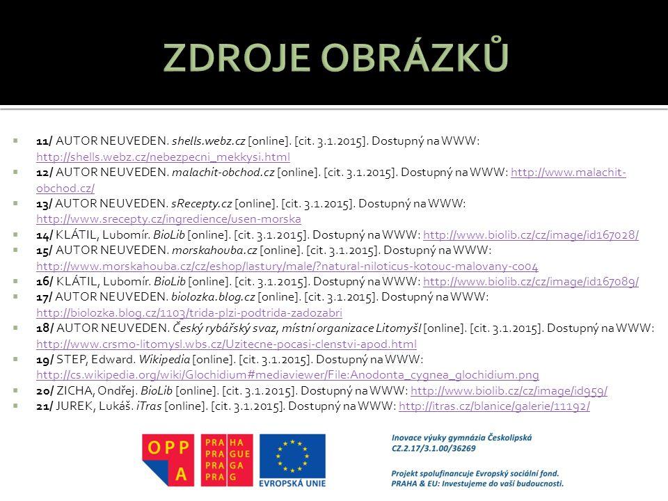  11/ AUTOR NEUVEDEN.shells.webz.cz [online]. [cit.