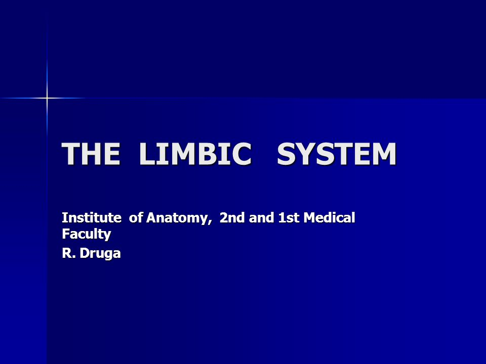 THE LIMBIC SYSTEM Institute of Anatomy, 2nd and 1st Medical Faculty R. Druga