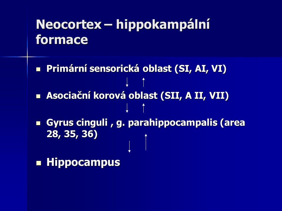 Neocortex – hippokampální formace Primární sensorická oblast (SI, AI, VI) Primární sensorická oblast (SI, AI, VI) Asociační korová oblast (SII, A II,