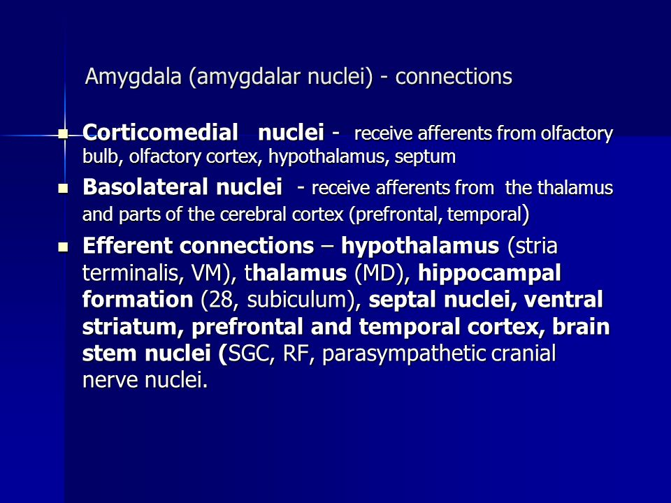 Amygdala (amygdalar nuclei) - connections Corticomedial nuclei - receive afferents from olfactory bulb, olfactory cortex, hypothalamus, septum Cortico